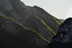 Grüngipfelbergtreppe