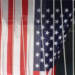 American Stars'n Bars