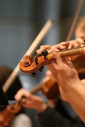 Geige im Orchester Musik für die Sinne