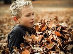 Im Herbst II