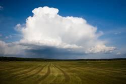 Wolken.Feld.