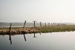 das frühjahrshochwasser
