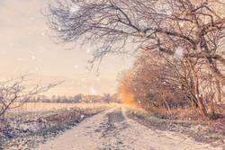 Snow falling on a countryside road in the winter