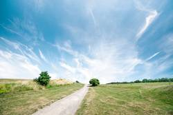 Trail in a beautiful landscape