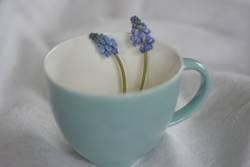 Tasse mit Perlhyazinthen