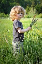 Jahreszeiten | Kleiner Junge auf einer Frühlingswiese im Mai