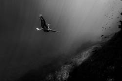 Woman diving in underwater landscape