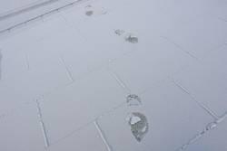 Deine Spuren im Schnee