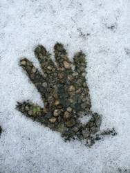 Mit warmen Händen geben