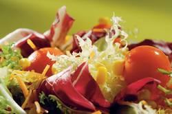 Salat mit Kopfsalat, Tomaten, Karotten und Endivien