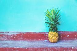 Large Pineapple on turquoise wall and red floor