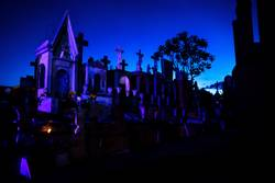 Blue and pink lightened tombstones during dawn