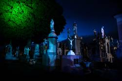 Blue lightened tombstones with huge tree during dawn