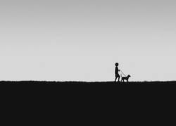 A Boy Walking His Dog