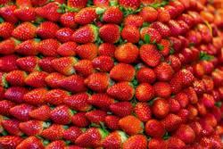 reife Erdbeeren im Stapel satt
