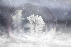 gefrorene Seifenblase im Schnee