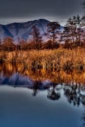 abstract autumn lake