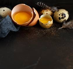 Chicken and quail eggs on a dark background