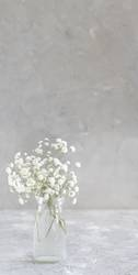 Bouquet of small white flowers in a jar