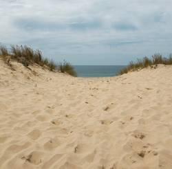 Dünenlandschaft mit Blick auf den Atlantik