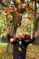 Herbstrauschen
