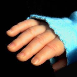 Finger-Model