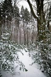 Snowgate.