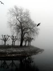 Wächter des Nebels