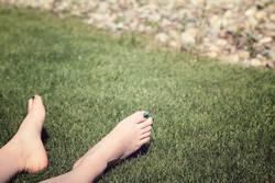 beste Graslage auf der Sonnenseite