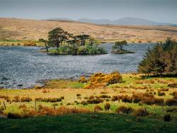Lough Bofin – Galway