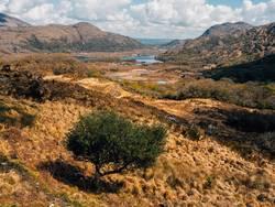 Ladies View - Irland