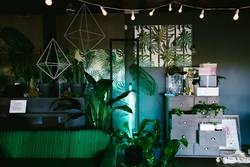 green mood room