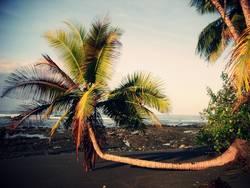 Sitzgelegenheit   Costa Rica, Parque Nacional Corcovado