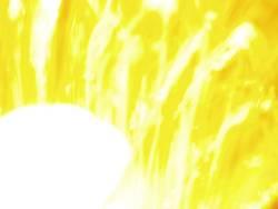 Gelb/Weiß 2