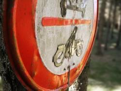 Schild im Wald