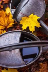 Gießkanne im Herbst