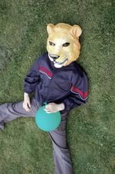 Löwe liegt lang