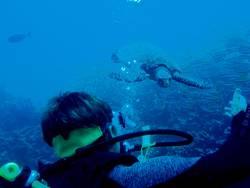 .underwater-meeting.