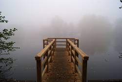 Foggy Lake Rethorn
