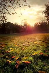 Herr Herbst am Morgen