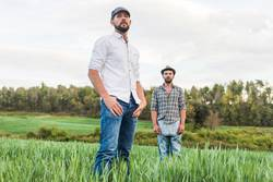 Two men standing in oat field with forest in background