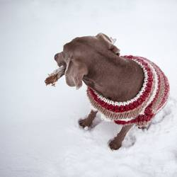 nochmal warm anziehen
