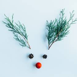 Creative layout made of Christmas decorations.