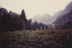 berglandschaft - analog