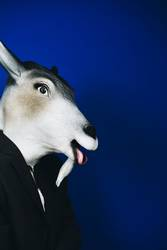 Scapegoat - person masked as goat