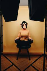 Woman with monkey mask sitting in photo studio