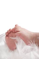 Babyfüße in Federn