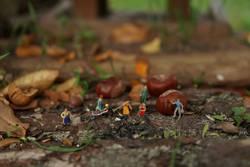 Miniaturwelten bei der Gartenarbeit....