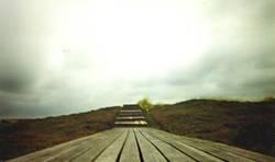 Holzsteg
