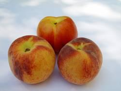 Pfirsich und Nektarine 2